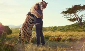 tigre-abrazo