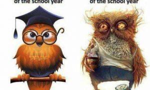 las emociones del maestro